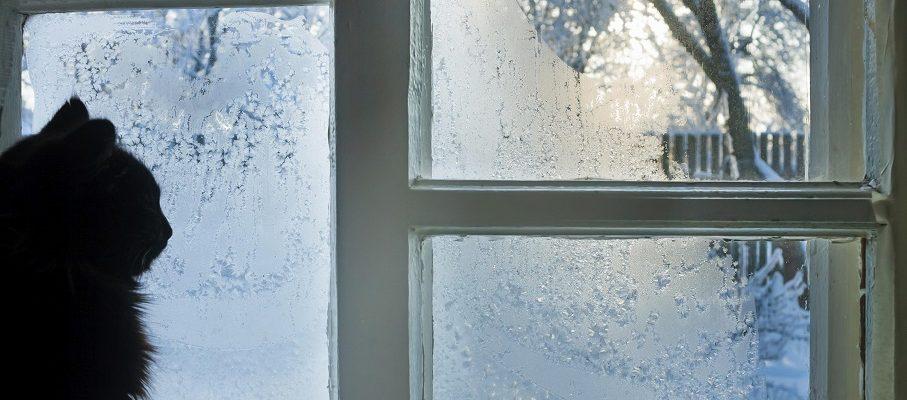 Huis winterklaar maken in 5 stappen
