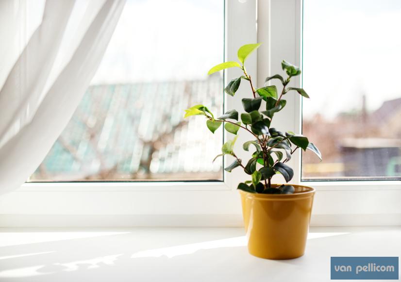 choisir un appui de fen tre adapt votre ch ssis van pellicom. Black Bedroom Furniture Sets. Home Design Ideas