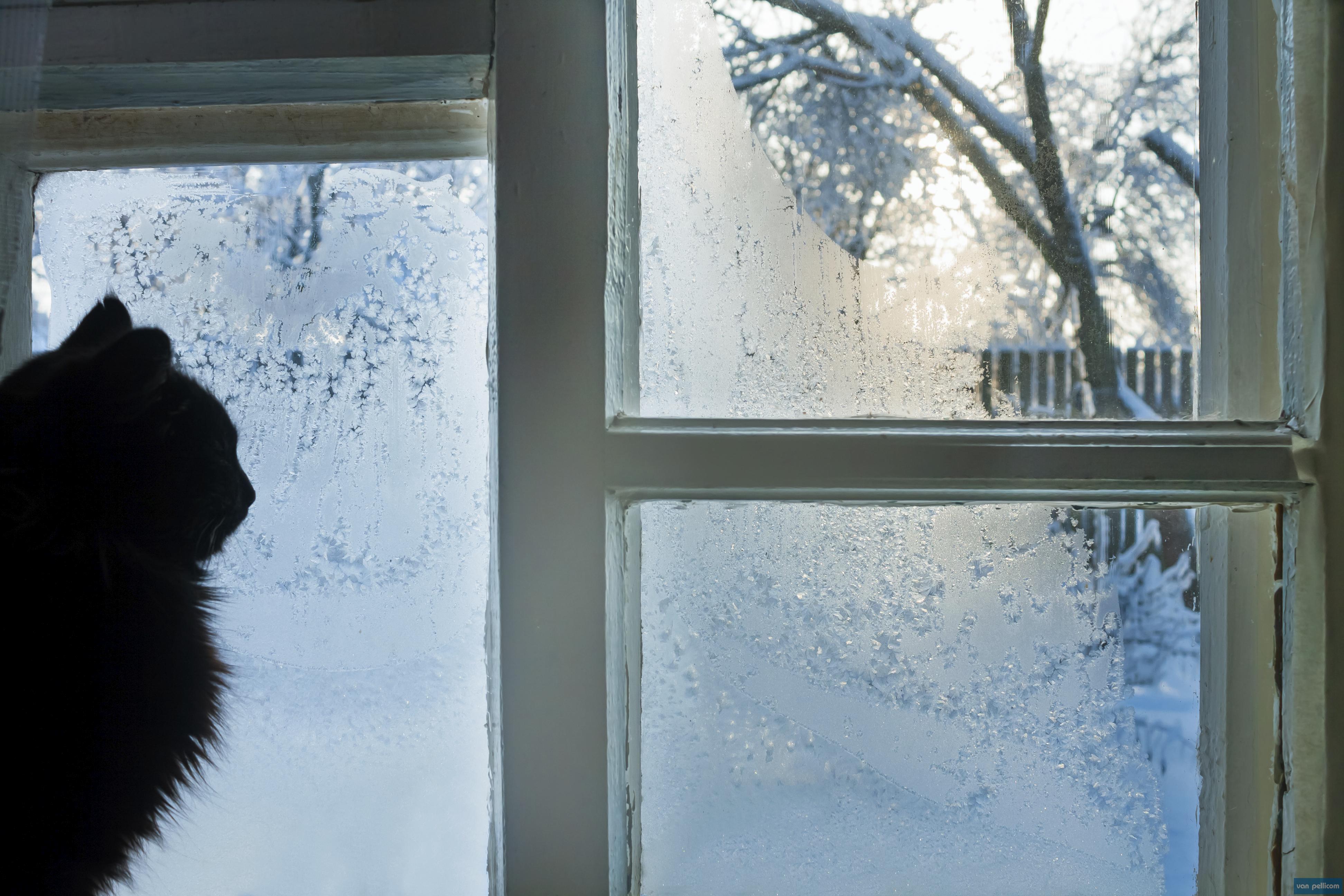 Pr parez votre maison pour l hiver en 5 tapes van pellicom for Isolation fenetre hiver